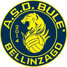 BULE' BELLINZAGO